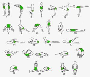 Posturas del Hata Yoga. Es el Yoga más común en Occidente.