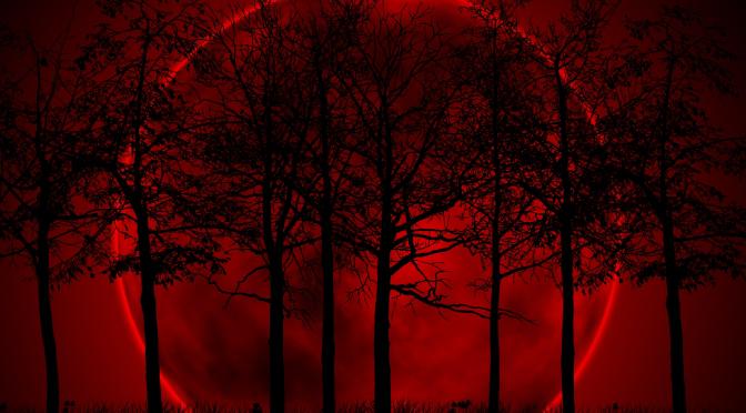 El Ciclo Shemitah y las lunas rojas