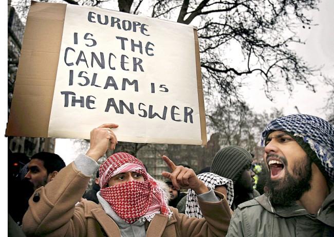 rpotestas islam