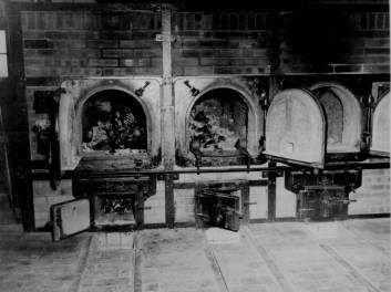 ovens-bones