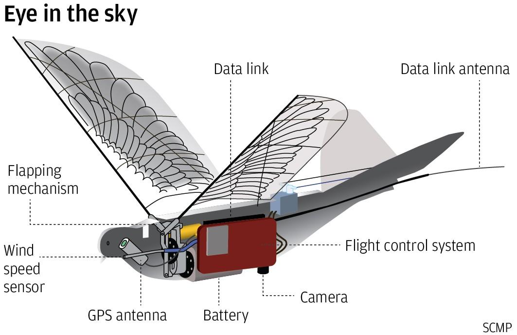 pajaro dron vigilancia 1