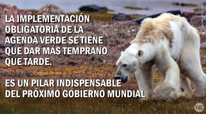 NOTICIAS FALSAS: Fotógrafa de 'Nat Geo' admite que la fotografía viral de oso polar 'que muere por el cambio climático' es falsa