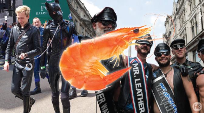 La homosexualidad, el camarón y el poliéster. ¿Estás seguro de que quieres destrozar el libro del Levítico?