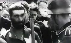 restos humanos de judios en bielorrusia 7