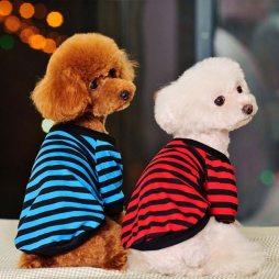 perro juguetes 3