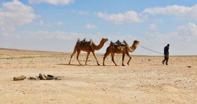 desierto del negev 2