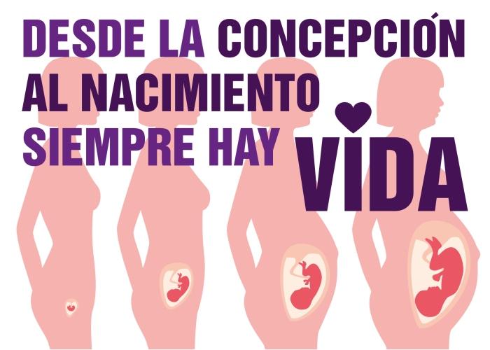 Posters cotra el aborto - material contra el aborto - amemos las dos vidas-02