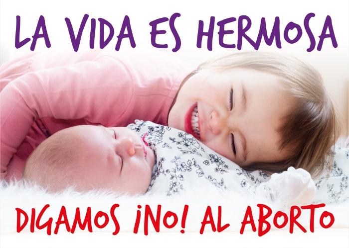 Posters cotra el aborto - material contra el aborto - amemos las dos vidas-06