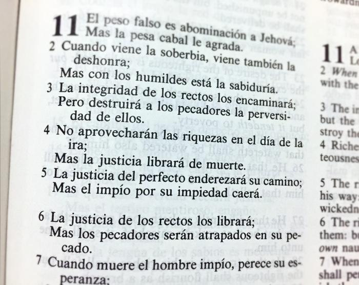 los rectos, la justicia y los impios